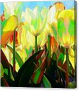 Popart Tulips Canvas Print