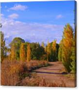 Poplar Lane Canvas Print