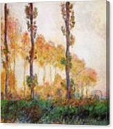 Poplars, Autumn Canvas Print