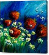 Poppies And Daisies  Canvas Print