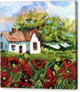 Poppies And Laundry Canvas Print