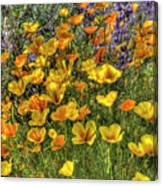 Poppies And Lupines Canvas Print