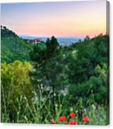 Poppies And The Alhambra Palace Canvas Print