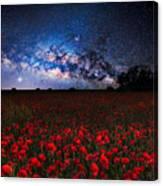 Poppies At Night Canvas Print