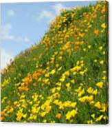 Poppies Hillside Meadow 17 Blue Sky White Clouds Giclee Art Prints Baslee Troutman Canvas Print