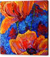 Poppies II Canvas Print