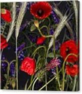 Poppies In The Corn Canvas Print