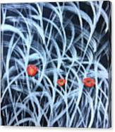 Poppies In The Grass Canvas Print