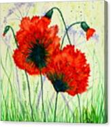 Poppies In The Wild Canvas Print