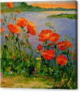 Poppies Near The River Canvas Print