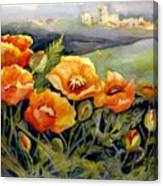 Poppies On A French Hillside Canvas Print