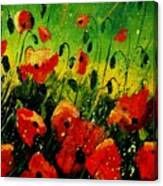 Poppies Poppies  Canvas Print