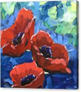 Poppies Splender Canvas Print
