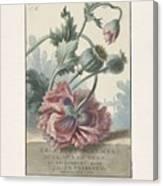 Poppies, Willem Van Leen, 1804 Canvas Print