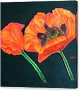 Poppy Bud And Bloom Canvas Print