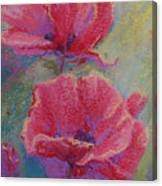 Poppy Duo Canvas Print