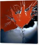 Poppy Explosion Canvas Print