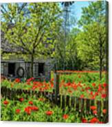 Poppy Farm Canvas Print