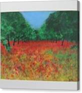 Poppy Field In Ibiza Canvas Print