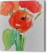 Poppy Flowers 1 Canvas Print