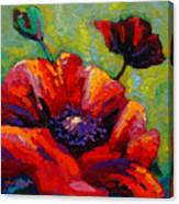Poppy I Canvas Print