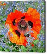 Poppy In Blue Canvas Print