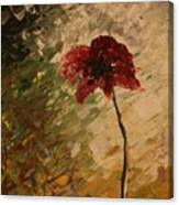 Poppy In The Dawn Canvas Print