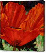 Poppy Side View Canvas Print