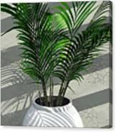 Porch Plant Canvas Print
