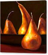 Port Au Pear Canvas Print