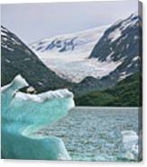Porter Glacier Alaska  Canvas Print