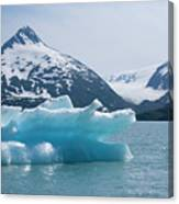 Porter Glacier Alaska II Canvas Print