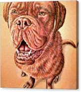 Portrait Drawing Of A Dog Canvas Print
