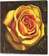 Portrait Of A Rose 5 Canvas Print