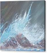 Portrait Of A Wave Canvas Print