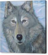 Portrait Of A Wolf Canvas Print