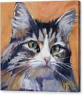 Portrait Of Squeaky Canvas Print