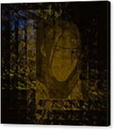 Portrait Reflection From Fresnel Prisms Canvas Print