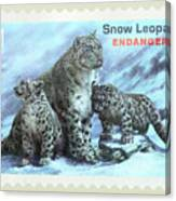 Postage Stamp - Snow Leopard By Kaye Menner Canvas Print