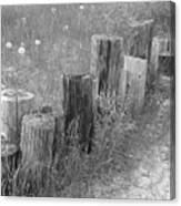 Posts In A Row Canvas Print