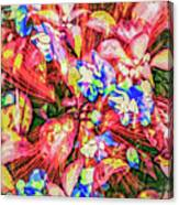 Pot Pourri Canvas Print
