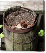 Pot Waiting For New Plant Canvas Print