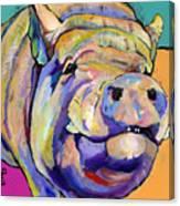 Potbelly Canvas Print