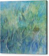 Potential Field Canvas Print
