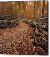 Potomac Heritage Trail Canvas Print