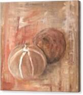 Potpourri Three Canvas Print