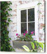 Potting Shed Window Canvas Print