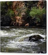 Poudre River 2 Canvas Print