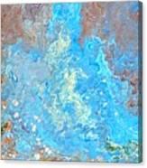 Siskiyou Creek Canvas Print