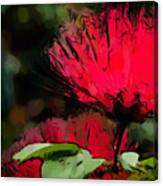 Powder Puff In Red Canvas Print